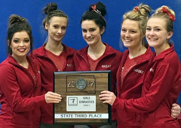 Gymnasts Third At State Meet